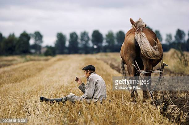 Farmer ploughing field, sitting and relaxing