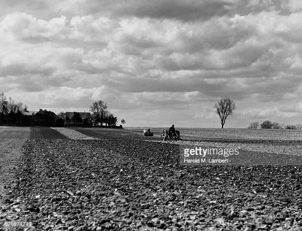 farmer plowing field by tractor - vertebrato foto e immagini stock