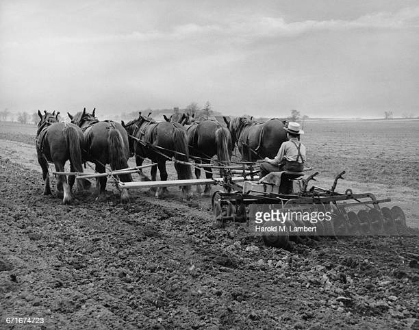 Farmer Plowing Field With Horse
