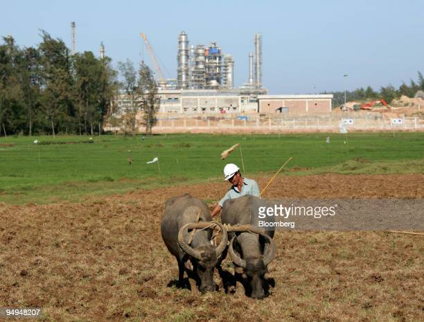 A farmer plows his field with a water buffalo near the state owned Vietnam Oil Gas Group refinery in Dung Quat Vietnam on Sunday Feb 22 2009 Vietnam...