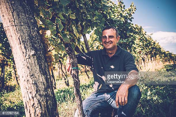 Farmer Portrait in his Vineyard