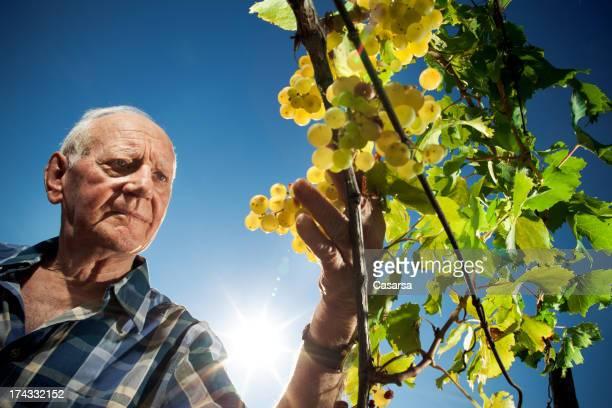 Agriculteur portrait