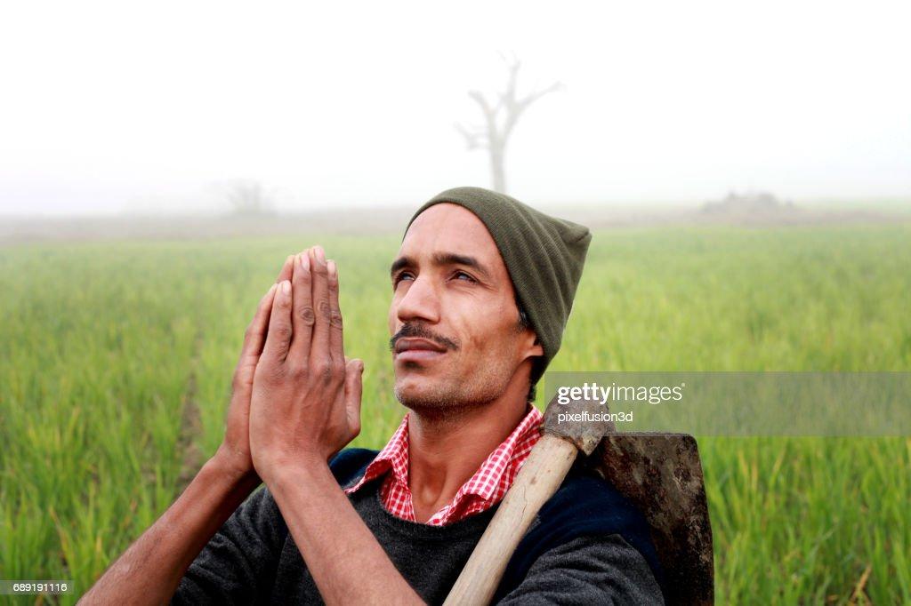 Farmer praying to god for good wheat crop : Stock Photo