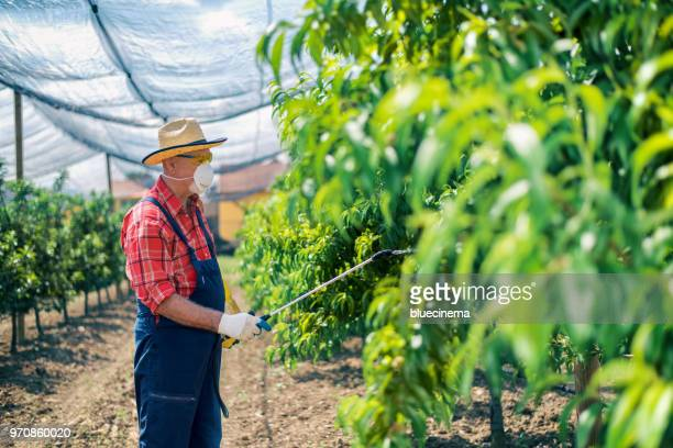 Farmer protecting his plants with chemicals