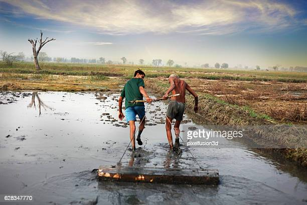 farmer pulling agriculture equipment - haryana stock photos and pictures