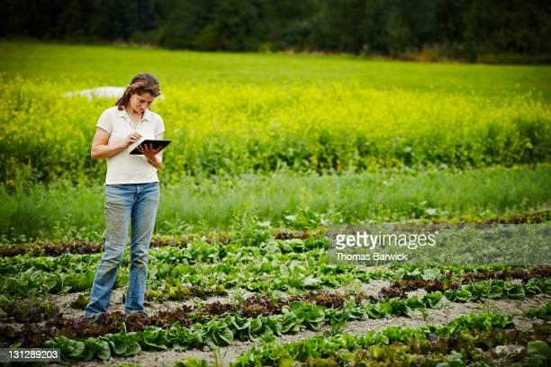 Farmer recording inventory on digital tablet