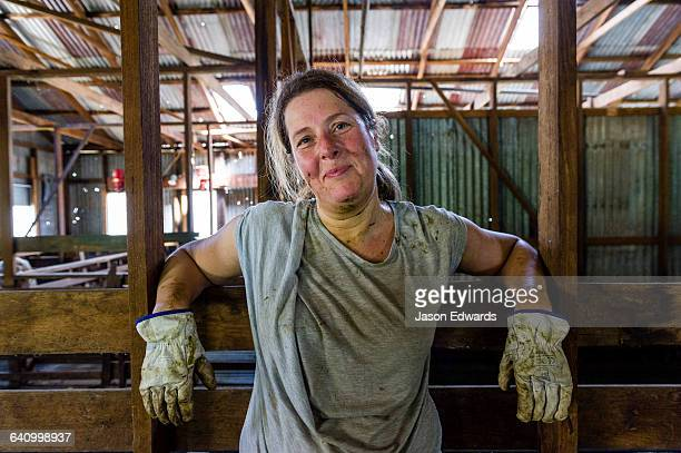 A farmer rests in a shearing shed after a hard day working sheep.