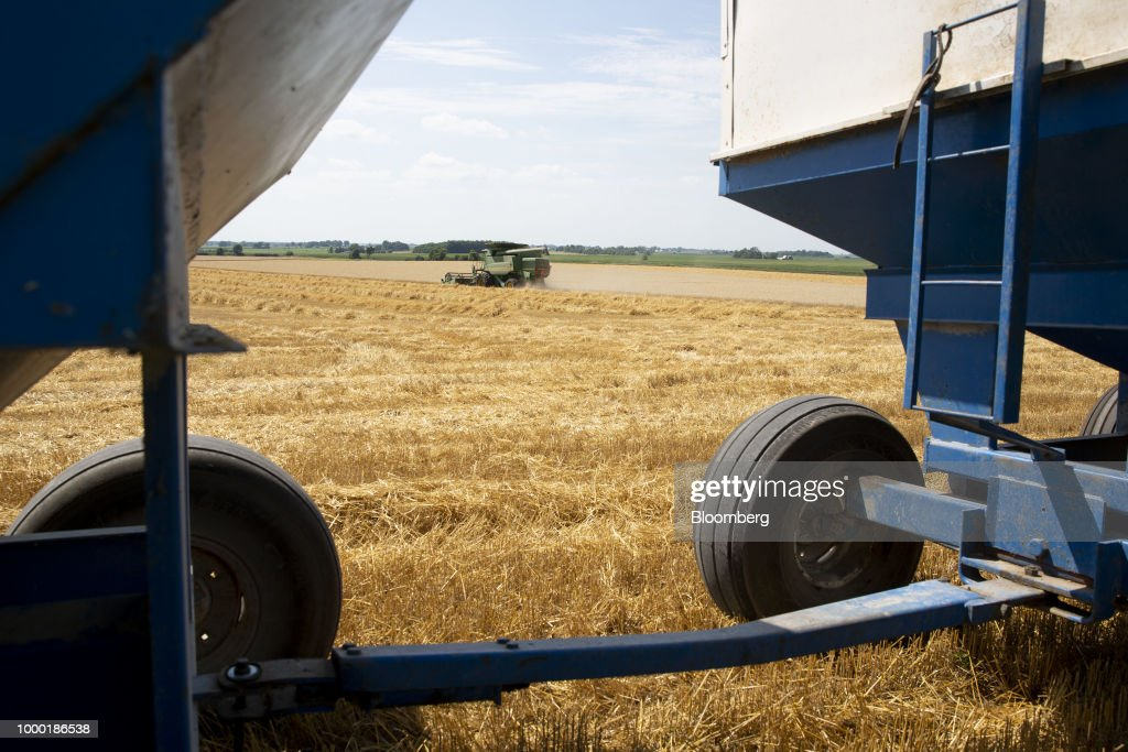 Operations During A Wheat Harvest As Crop Report Shifts