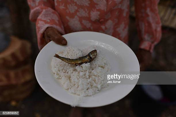COTABATO MINDANAO PHILIPPINES APRIL 08 A farmer showing her plate of rice and dried fish in Arakan on April 8 2016 in Cotabato Mindanao Philippines...
