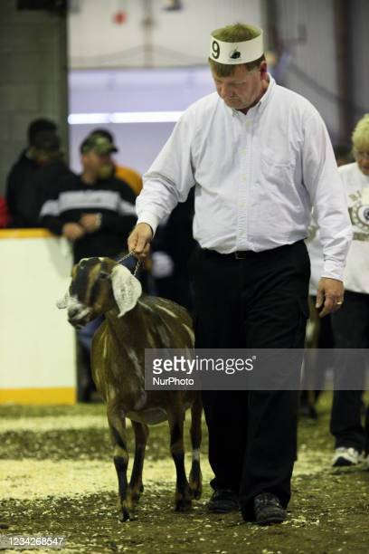Farmer shows off a goat during a livestock competition in Markham, Ontario, Canada, on October 04, 2009.