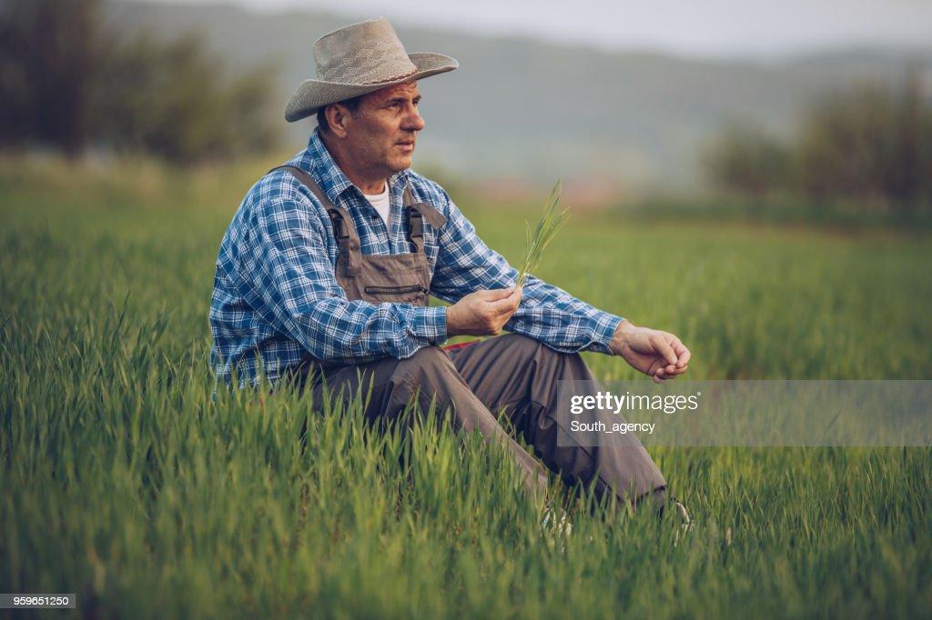 Bauer sitzt im Feld : Stock-Foto