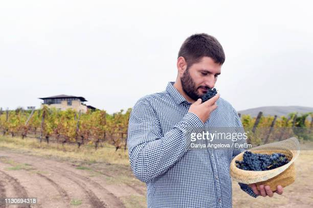 farmer smelling grapes while standing on field against clear sky in vineyard - ripe stock pictures, royalty-free photos & images