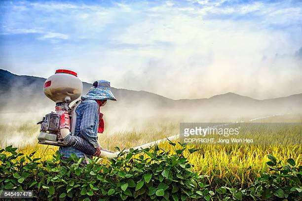 A farmer spraying agricultural pesticide