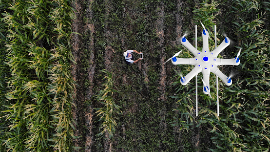 Farmer spraying his crops using a drone 1128102492