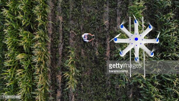 farmer spraying his crops using a drone - innovation stock pictures, royalty-free photos & images