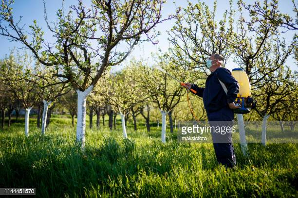 farmer, spraying organic pesticides. - insecticide stock pictures, royalty-free photos & images