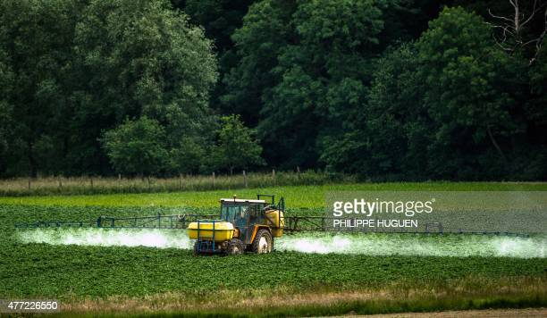 A farmer sprays pesticides on his crops in Bailleul northern France on June 15 2015 French Ecology Minister Segolene Royal announced on June 14 2015...