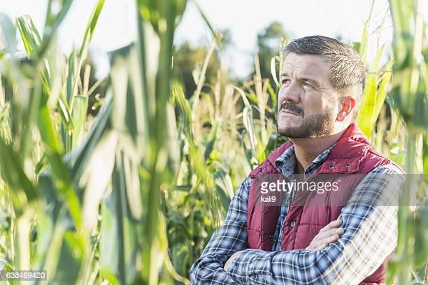 Farmer standing in field of corn looking upward