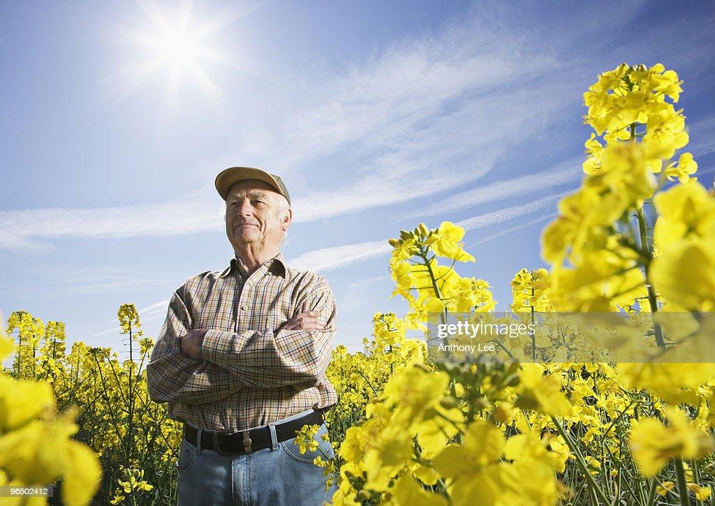 Farmer standing in field of flowers : Stock Photo