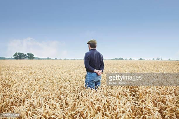 Farmer standing in field of wheat