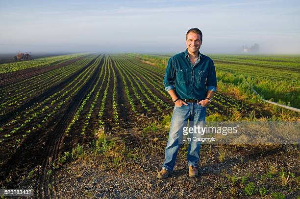 farmer standing in lettuce field - jim farmer stock photos and pictures