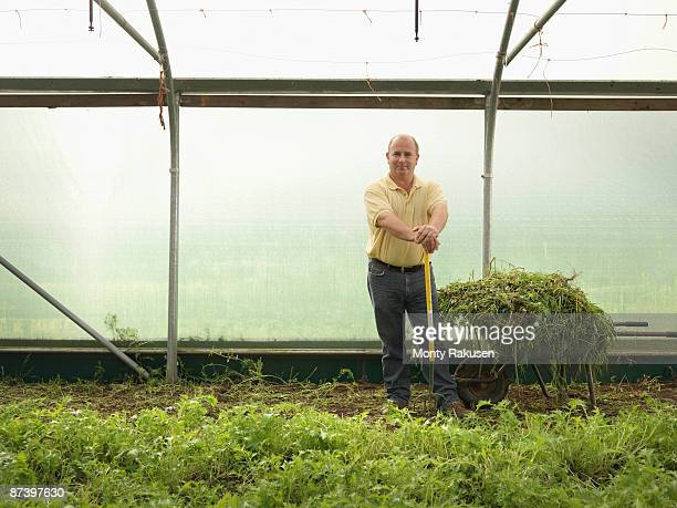 farmer standing in polytunnel - tadcaster stock photos and pictures