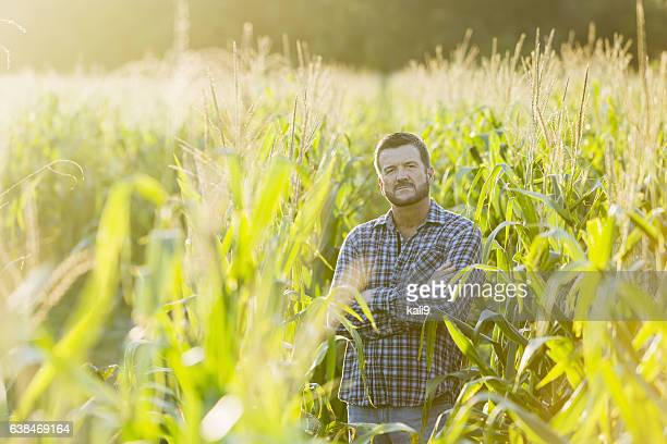Farmer standing in sunny corn crop field