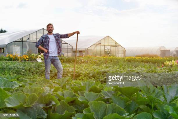 farmer standing in vegetable field - produtor - fotografias e filmes do acervo