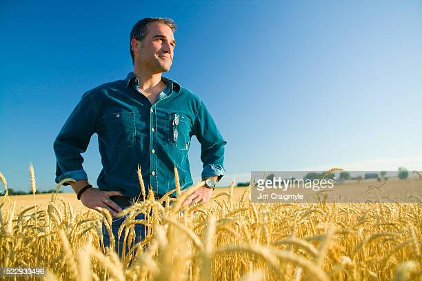 farmer standing in wheat field - agricultura - fotografias e filmes do acervo