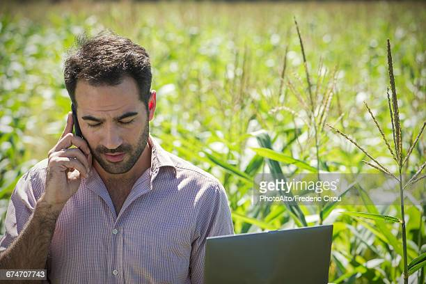 Farmer talking on cell phone in cornfield