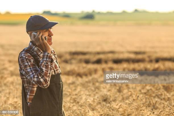 Farmer talking on smart phone in wheat field