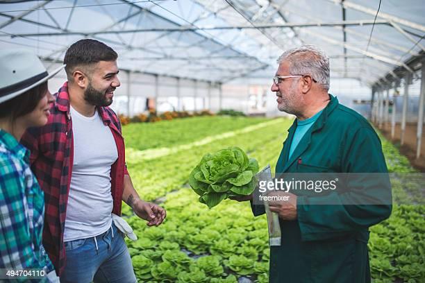 Farmer teaching how to gardening