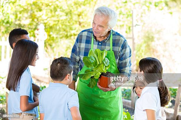 Farmer teaching students about agriculture during field trip at farm