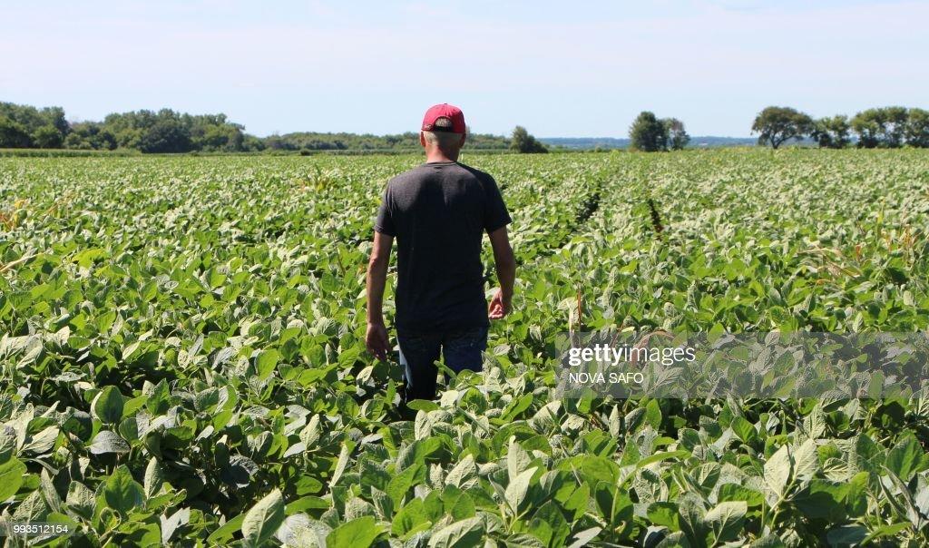US-CHINA-TRADE-TARIFF-POLITICS-FARMS : News Photo