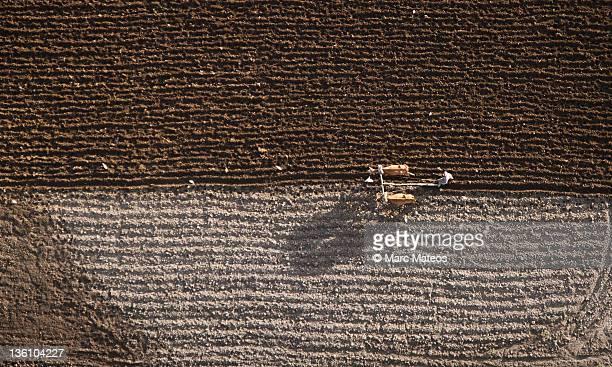 farmer tills his fields with patience - marc mateos fotografías e imágenes de stock