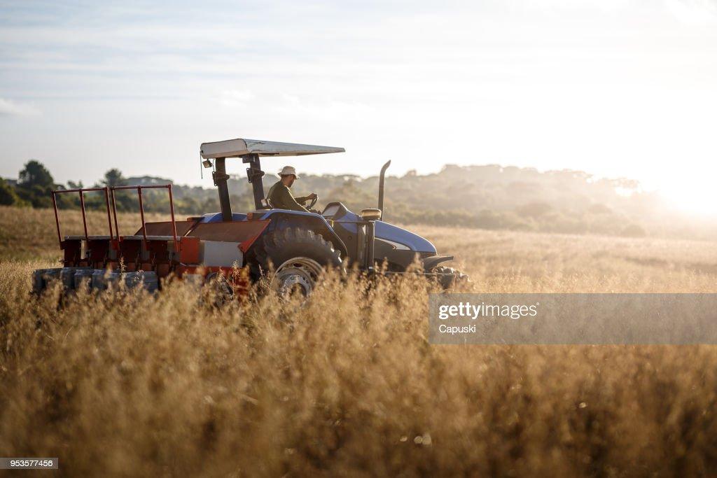 農民トラクター ドライバーを選ぶ : ストックフォト