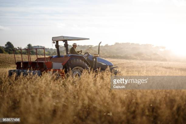 Farmer tractor driver picking