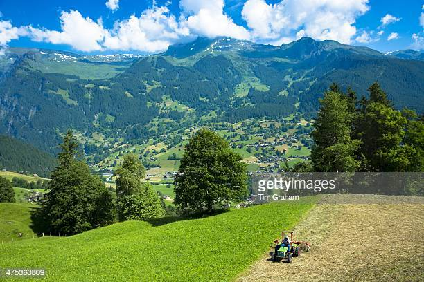 Farmer turning cut hay to dry it at Grindelwald beneath the Eiger mountain in the Swiss Alps in the Bernese Oberland Switzerland