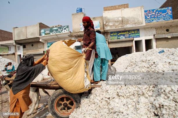 A farmer unloads cotton from a donkey cart at a market in the district of Lodhran Punjab province Pakistan on Thursday Oct 24 2013 Cotton imports by...