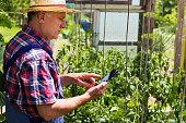 farmer using modern technology