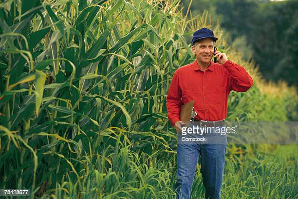 Farmer walking in cornfield with cell phone
