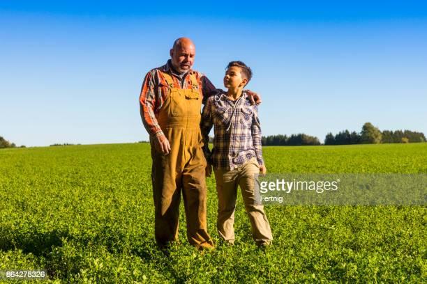 Farmer walking with his son in an alfalfa field.