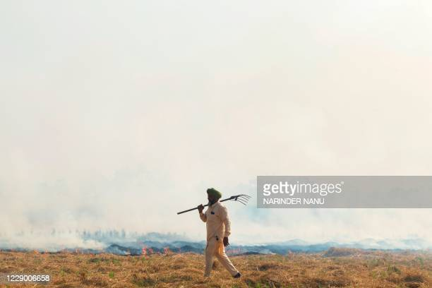 Farmer walks next to burning straw stubble after harvesting a paddy crop in a field on the outskirts of Amritsar on October 11, 2020.