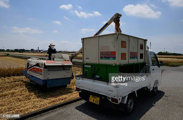 A farmer watch an Iseki Co combine harvester load a truck with wheat grain during harvesting in Chiyoda Town Gunma Prefecture Japan on Sunday June 7...