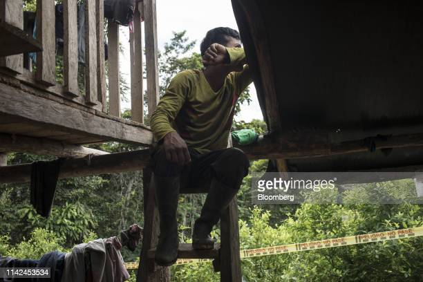 A farmer watches as antinarcotics police destroy coca fields during an operation in Tumaco Narino department Colombia on Tuesday May 8 2019...