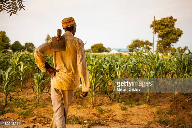 Farmer with a hoe tool contemplating his crop
