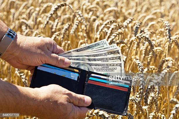 farmer with purse and dollar banknotes in a corn field