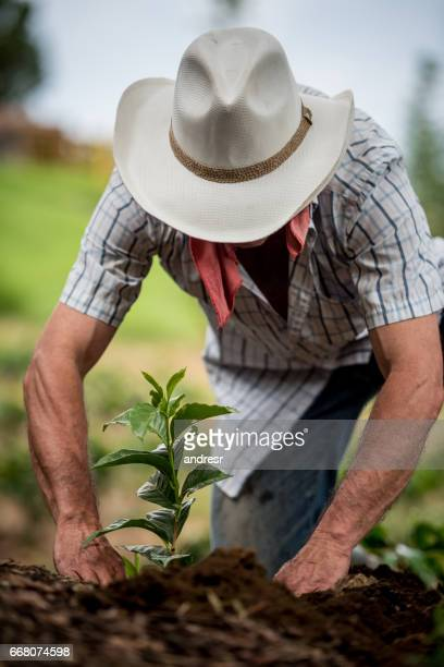 Farmer working the land and planting a tree at the farm