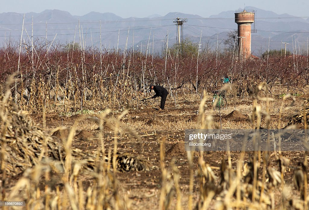A farmer works in a field in Pinggu, on the outskirts of Beijing, China, on Saturday, Nov. 17, 2012. China's gross domestic product slowed to 7.4 percent in the July-September period from a year earlier, the weakest in three years. Photographer: Tomohiro Ohsumi/Bloomberg via Getty Images