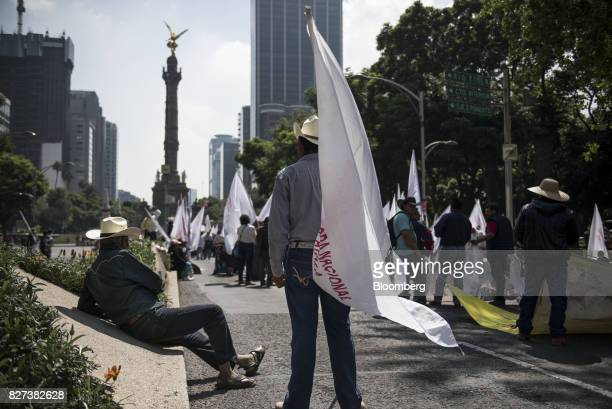 Farmers and supporters hold signs during a protest against the North American Free Trade Agreement on the anniversary of the revolutionary leader...